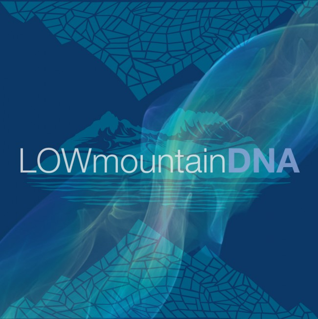 Lowmountain DNA cover
