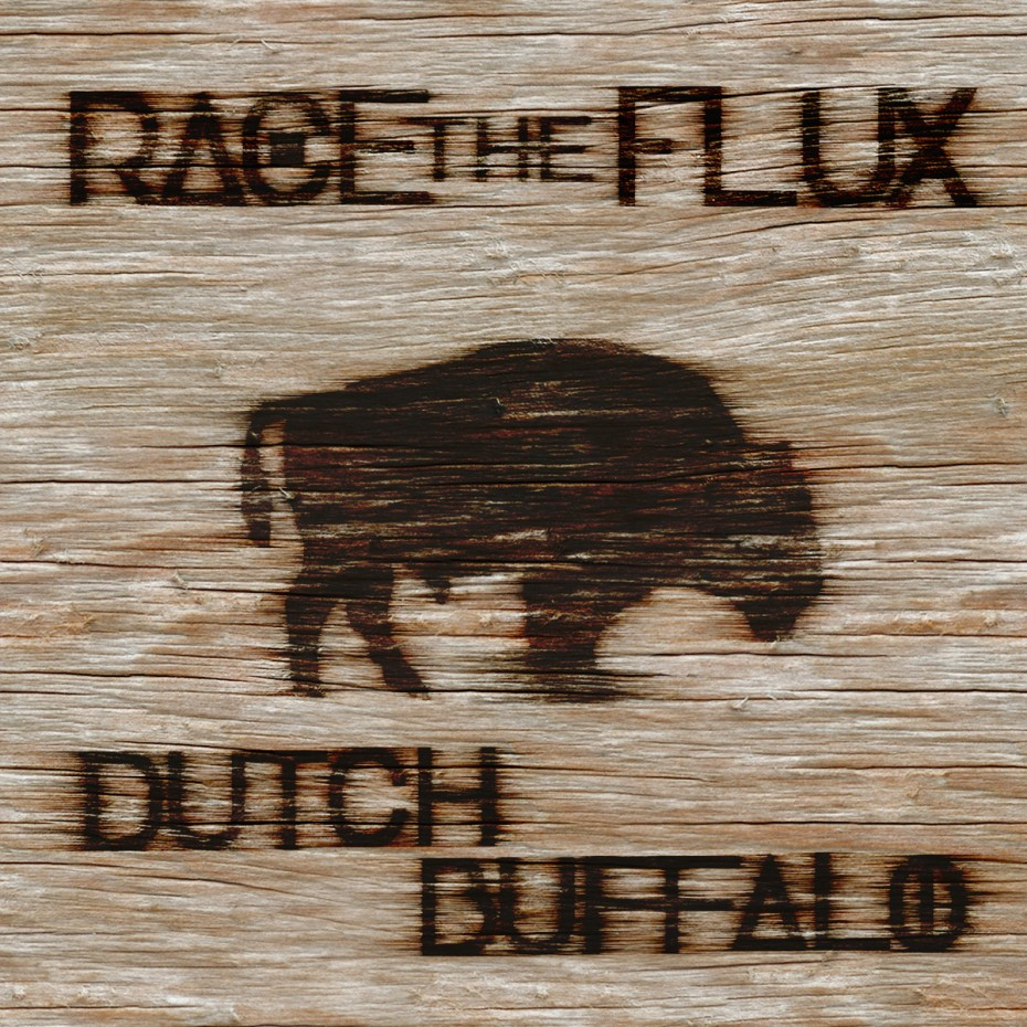 race the flux cover