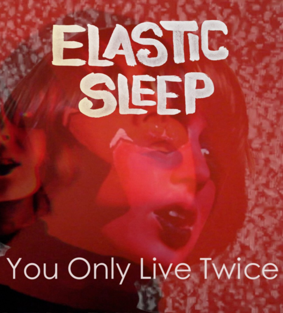 elastic sleep yolt cover
