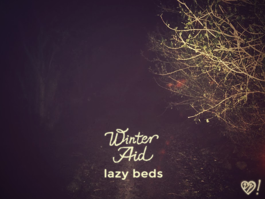 winter aid cover